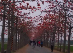 公路邦 園地粉絲團 — 文案回顧(24) 201404w1