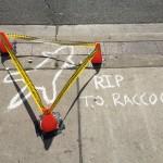 RIP-#DeadRaccoonTO